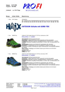 thumbnail of HAIX – Outdoorschuhe mit GORE TEX = 07-2020
